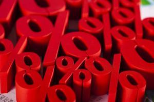 Sebastian Duda / Shutterstock.com