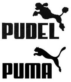 Pudel und Puma